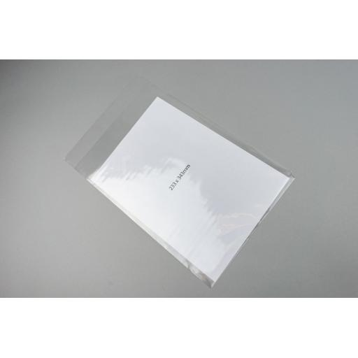 Clear Polyprop Bags 233x343+37mm