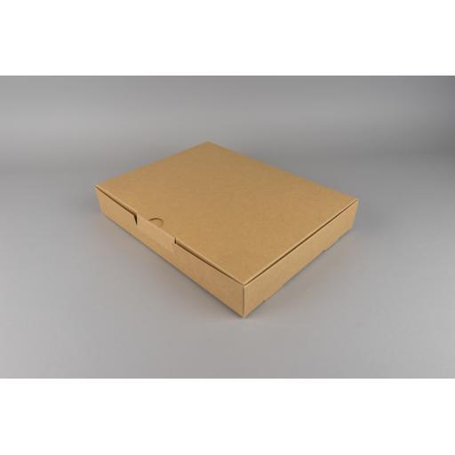 Brown Presentation Carton 304x230x48mm