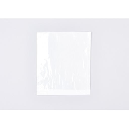 Clear Faced Bags 250x275mm