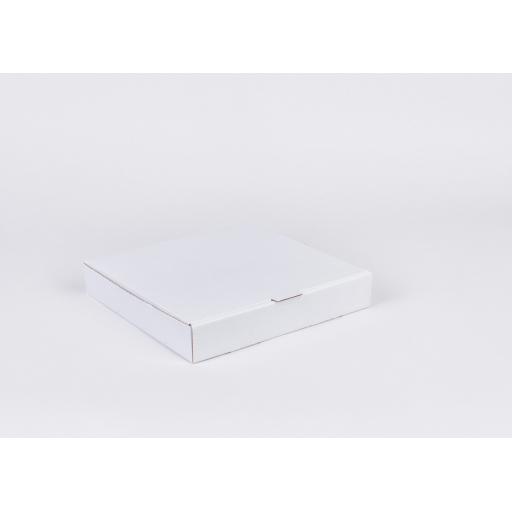 White 10 Inch Pizza Box
