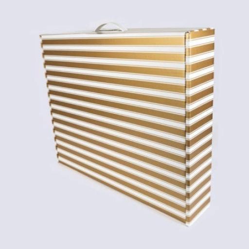 Box with Plastic Handle