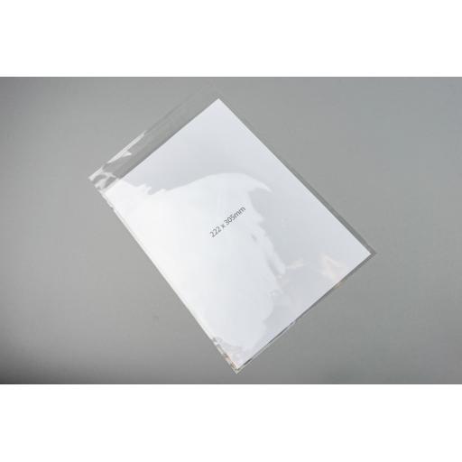 Self Seal Polyprop Clear Bag 222x305+30mm