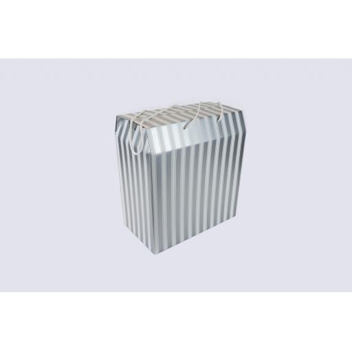 Cord Carry-Handle Box 350 x 190 x 375mm Silver and White