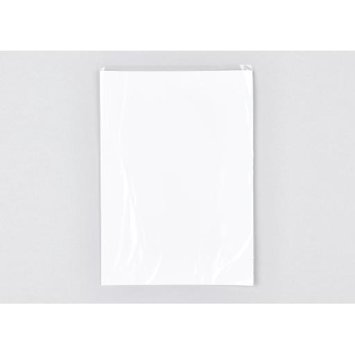 Pearlised Film Front Bag 178x260mm