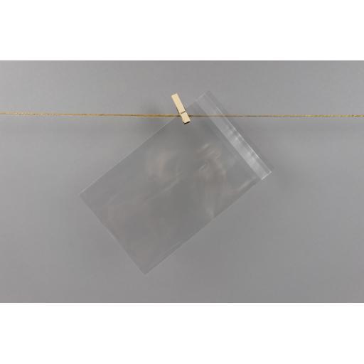 Clear Flat Bag Self Sealing 118x164mm