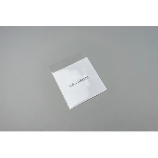 Clear Polyprop Bags 109x109+24mm