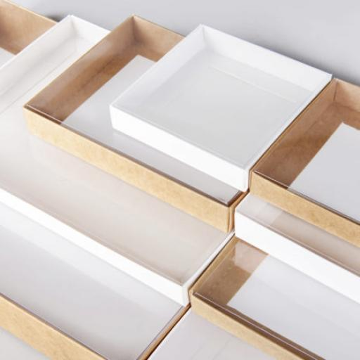 Clear Lid Boxes